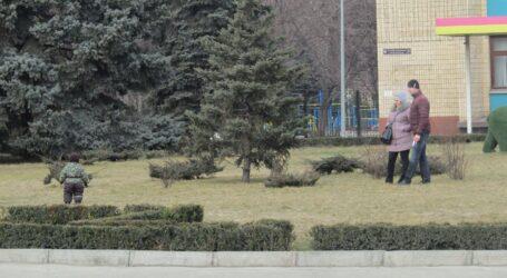 Повчальна історія про клумбу та патріотизм в центрі Кам'янського