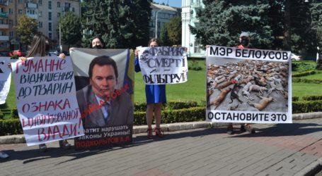 Зоозахисникам в Кам'янському вдалося привернути увагу міської влади до вилову собак на території ДМК
