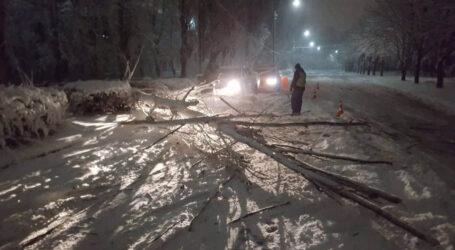Снігопад не паралізував Кам'янське: 5 заторів і 4 аварії без жертв, транспорт працює (+фоторепортаж)
