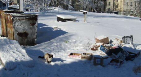 Скільки коштує цивілізоване збирання сміття в Кам'янському