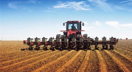 Аграрії скаржаться на брак вологи та роблять ставку на соняшник і кукурудзу