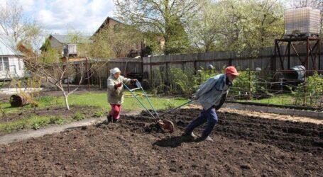 Про початок дачного сезону в Кам'янському та ризики для здоров'я садоводів
