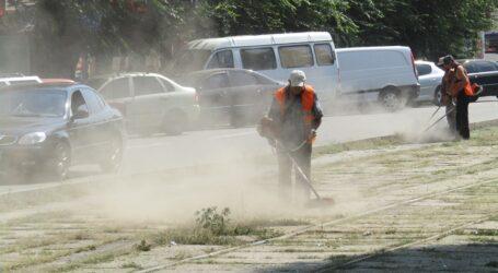 Проблеми косарів у Кам'янському: курява та «сюрпризи» в бур'янах