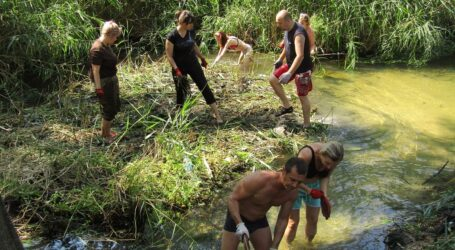 Розчистка лівобережного каналу руками небайдужих в Кам'янському: результати сумнівні
