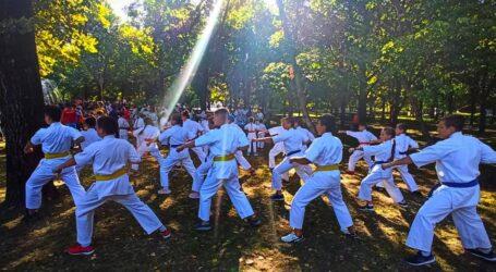 Фізкультура та спорт в Кам'янському: паради та досягнення юних спортсменів