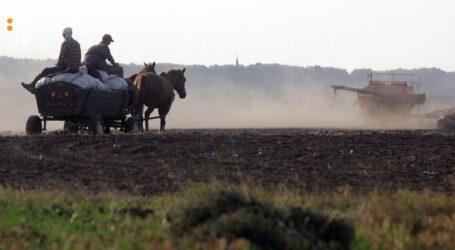 Українська земля у власності: товар чи халепа?