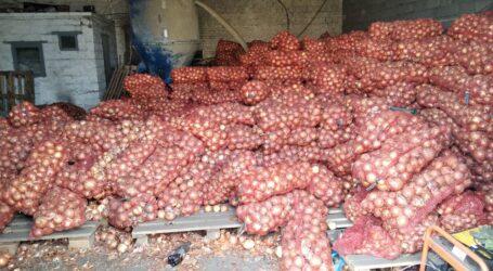 Про ціну овочей з «борщового набору» розповідають фермери з околиць Кам'янського