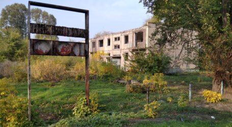 Про трудове виховання радянських дітей в Кам'янському: участь в битві за врожай