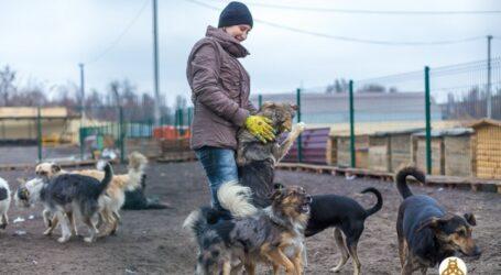 Зоозахист як приклад волонтерства в Кам'янському