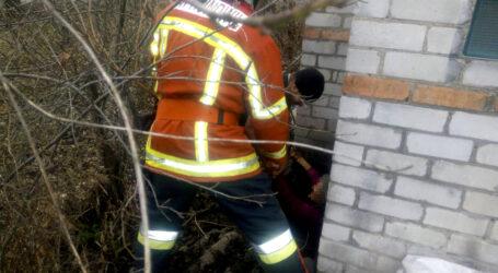 На Дніпропетровщині жінка впала у вигрібну яму