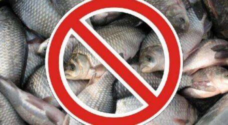 Поліцейські Дніпра спіймали браконьєрів, які незаконно виловлювали рибу