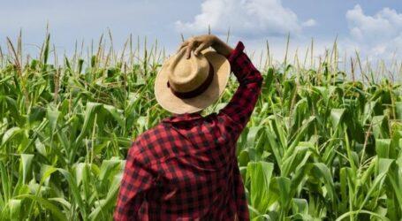 Кам'янчани можуть стати учнями «Школи фермерства 2.0»