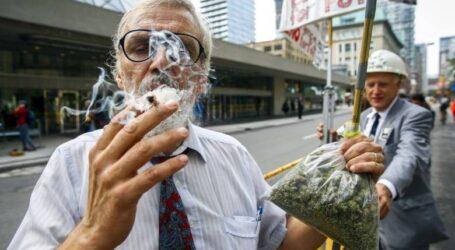 Коноплі рятують від гіпертонії, але можуть шкодити, як тютюн чи алкоголь