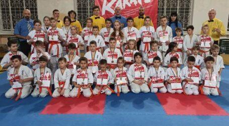 В Каменском соревновались юные каратисты