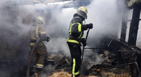 На Дніпропетровщині на пожежі загинули свійські тварини