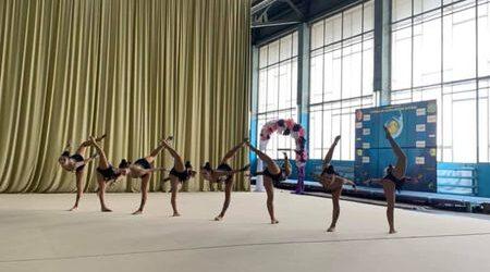 Каменские гимнастки – призеры Чемпионата области