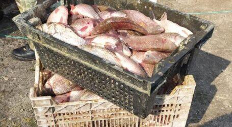 На Кам'янському водосховищі спіймали рибалок-браконьєрів
