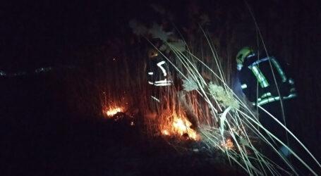 Під Кам'янським ліквідували масштабну пожежу