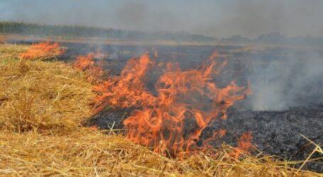 Цієї весни на Дніпропетровщині майже 130 разів горіла стерня