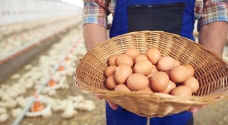 Дніпропетровщина – лідер України з виробництва сільськогосподарської продукції
