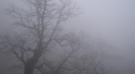Надзвичайники попереджають про туман