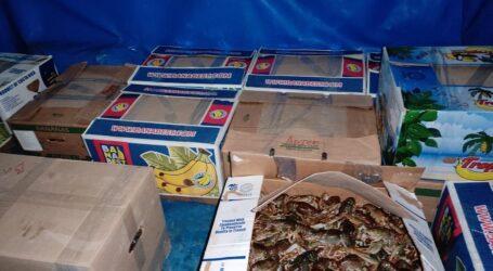 На Дніпропетровщині поліцейські вилучили 330 кг раків