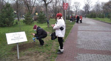 Алею магнолій в парку Кам'янського посадили мешканці міста