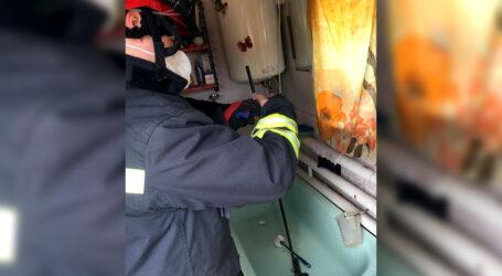 У Дніпрі рятувальники виловлювали півметрову змію, що заповзла у будинок