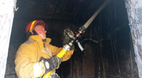На Дніпропетровщині на пожежі згоріли 80 курчат