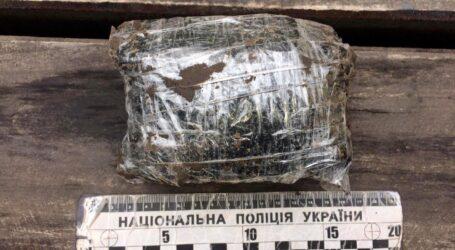 Поліцейськи затримали 19-річного кам'янчанина за збут наркотиків