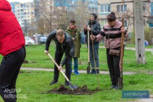 В Каменском высадили 1000 деревьев и 600 кустов - ФОТО
