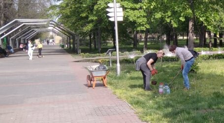 Деякі уроки озеленення в Кам'янському
