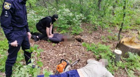 На Дніпропетровщині викрили злочинну групу, яка незаконно рубала ліс
