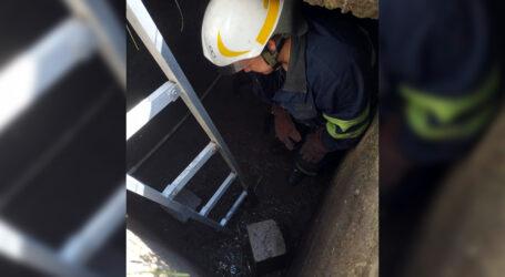 У Кам'янському собака впала у двухметрову яму