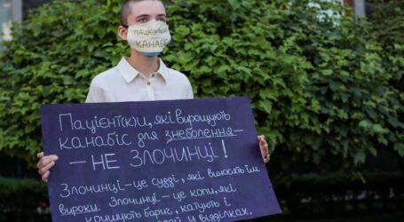 Легалізацію конопель розгляне позачергово парламент України