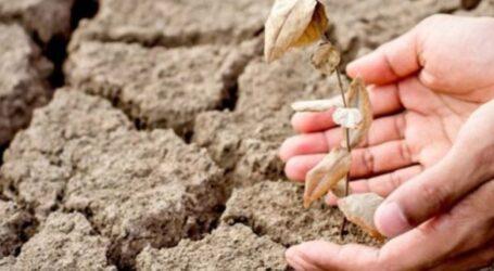Дніпропетровщина повертається до територій ризикованого землеробства