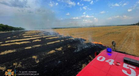 У Кам'янському районі горіло поле с залишками пшениці