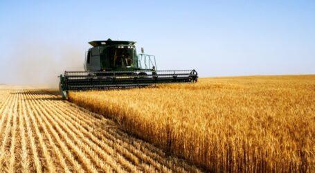 Аграрії Дніпропетровщини вже зібрали майже 75% ранніх зернових