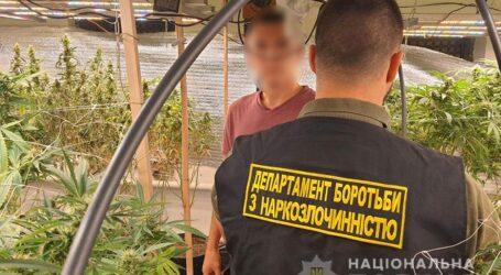 На Дніпропетровщині затримали групу збувачів канабісу з доходом близько мільйона гривень щомісяця