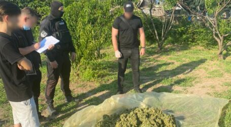 На Дніпропетровщині затримали наркоугруповання