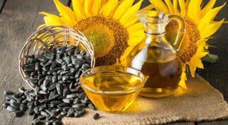 В Україні очікується здешевлення соняшникової олії