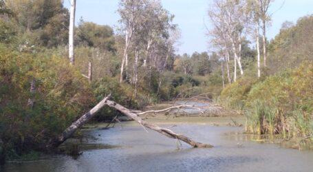 Воду в Україні хочуть віддати приватним водокористувачам