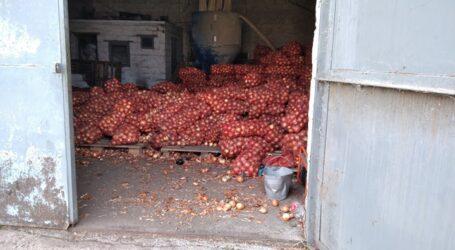 Ціни на овочі будуть високі, особливо взимку, прогнозують фермери Дінпропетровщини