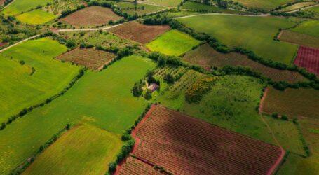 Два місяці ринку землі: Дніпропетровщина у ТОП-10 регіонів за площею земель та за кількістю угод