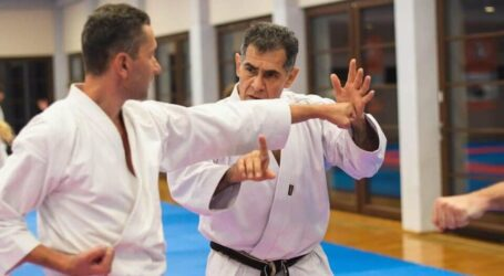 Тренер з Кам'янського запрошений на міжнародний семінар – розвивати традиційне карате