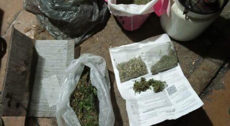 На Днепропетровщине полицейские в ходе обысков обнаружили плантацию конопли и наркотические вещества
