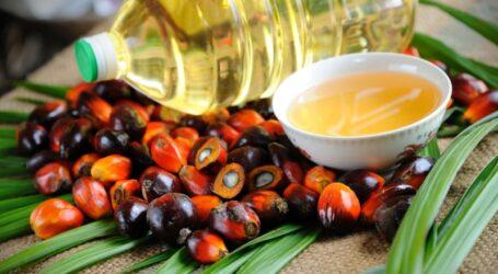 В Украине хотят запретить использование пальмового масла в продуктах