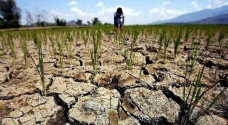 Людству загрожує глобальна посуха, попереджає ООН