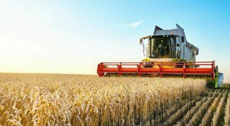 Аграрии Днепропетровщины могут получить поддержку государства